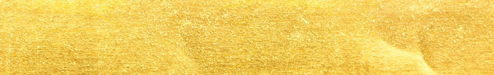 HEV gold bg